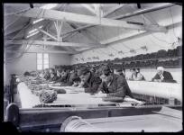 Les Lissiers dans l'atelier de basse lisse Tabard. Plaque de verre, Fonds Tabard